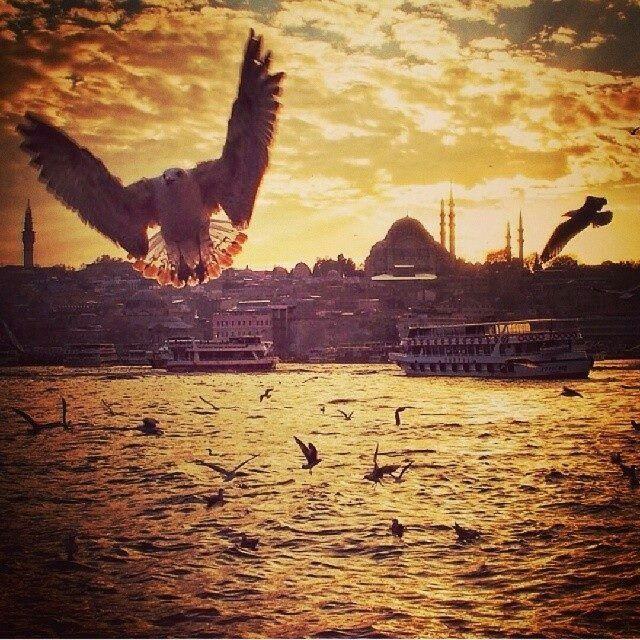 .ah İstanbul