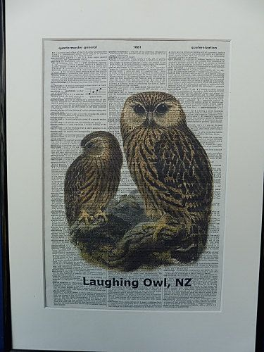 Laughing Owl Bird Dictionary Wall Art Print owl by DecorisDesigns