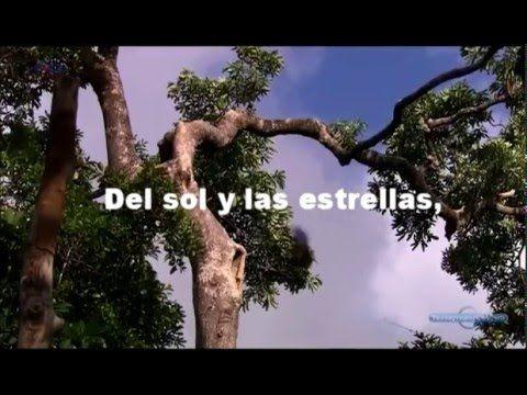 CONTIGO EN LA DISTANCIA /(estilo Luis Miguel) /Angel Ceballos Vázquez (c...