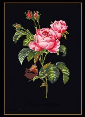 Roses Cross Stitch Kit - Black Aida. I have never seen black aida before, beautiful!
