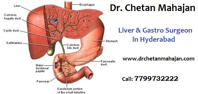 Pin by Dr  Chetan Mahajan on Best Liver Surgeon in Hyderabad