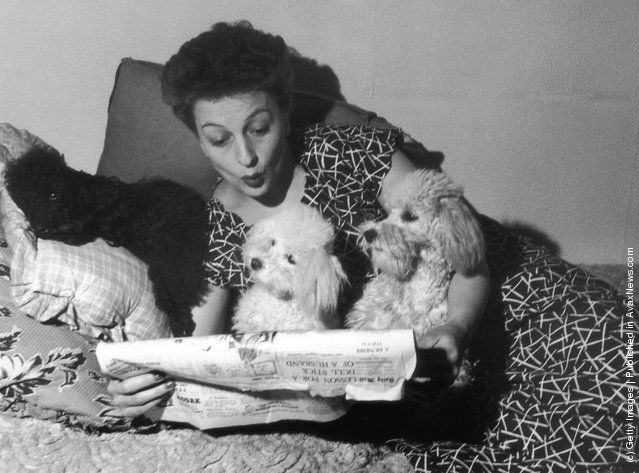 British actress and singer Betty Driver with the three pet poodles
