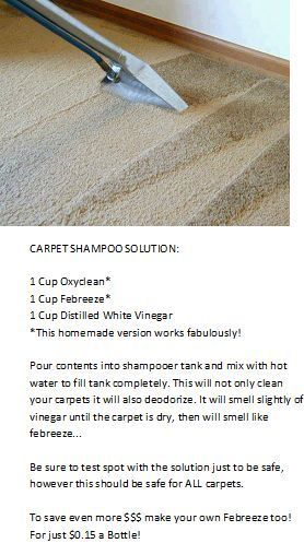 Carpet Cleaner for