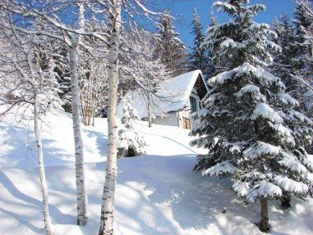 Ugodna klima tijekom ljeta poziva sve one koji ne vole mediteranske ljetne žege, a zimi obilje snijega čini raj za skijaše a naravno i za one na sanjkama ili snowboardu. Tu su i brojne čiste i bistre rijeke i brzaci, slikovite šarene doline, jezera i špilje za one željne više avanture. Svi gosti bit će toplo dočekani u nekom od hotela, apartmana ili seoskih domaćinstava koji su pravi muzeji regionalne kulture http://www.zelim-odmor.com/planinski-turizam/
