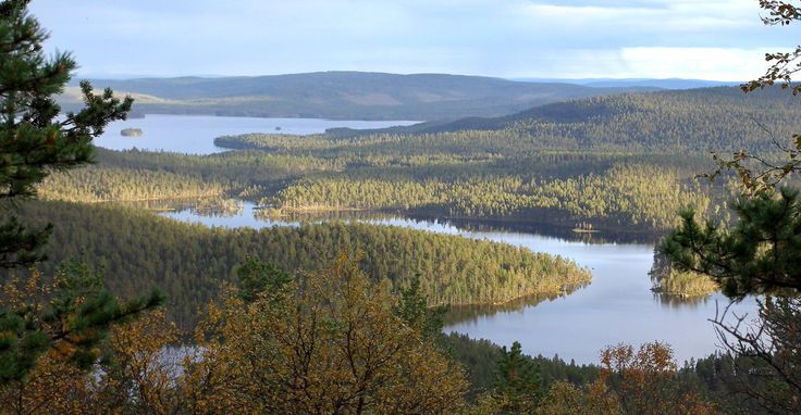 Photo by NorthernLightsInari @InariLights #Sunset and the first colours of #autumn. #Inari #Lapland #Lappi #landscape #trekking #hiking #wilderness #Finland #filmlapland #arcticshooting
