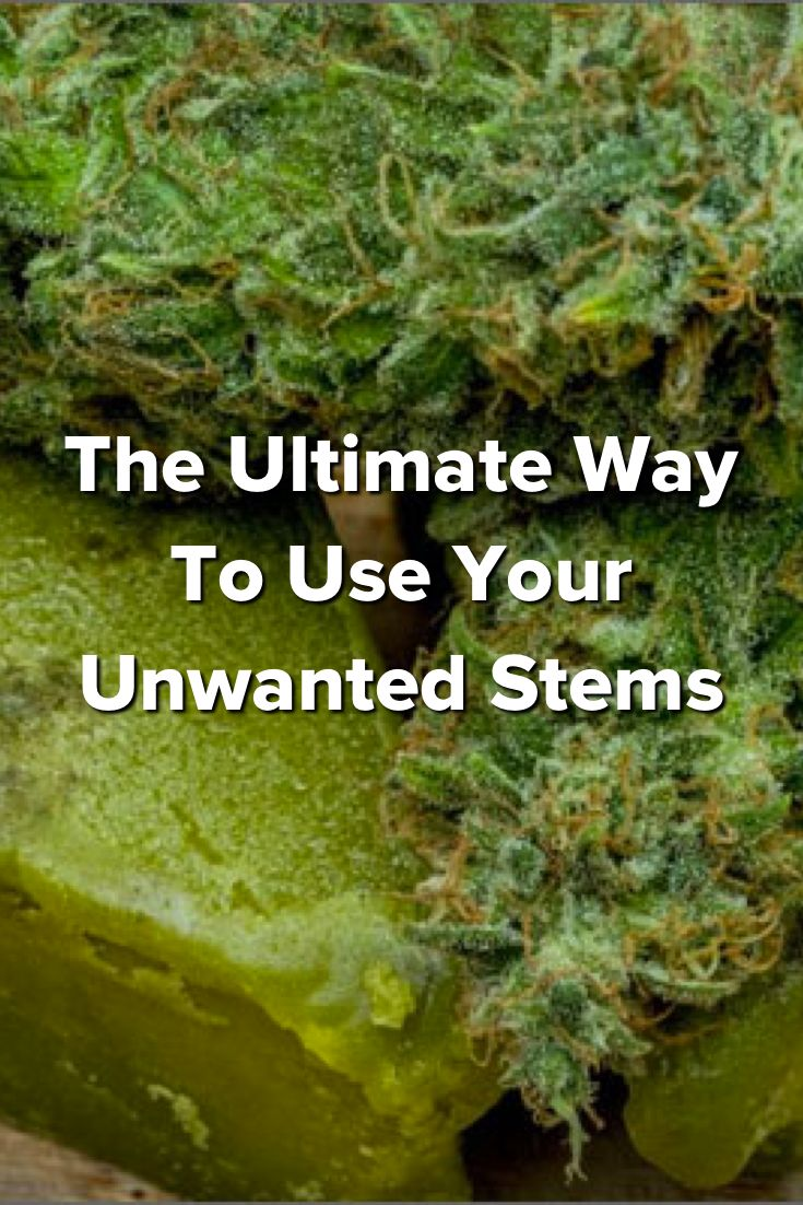 The Ultimate Way To Use Your Unwanted Stems