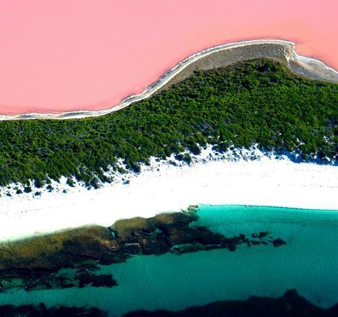 Pink Lake, Western Australia!