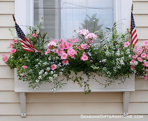 nantucket window boxes   How about small stakes and/or inverted bottles on stakes?