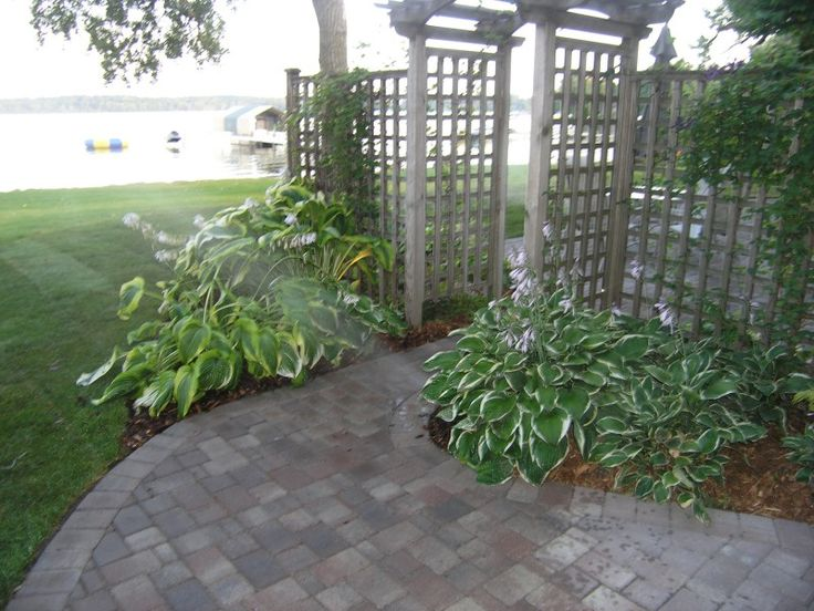 Open lattice screen fence with arbor | Front Patio in 2019 ...