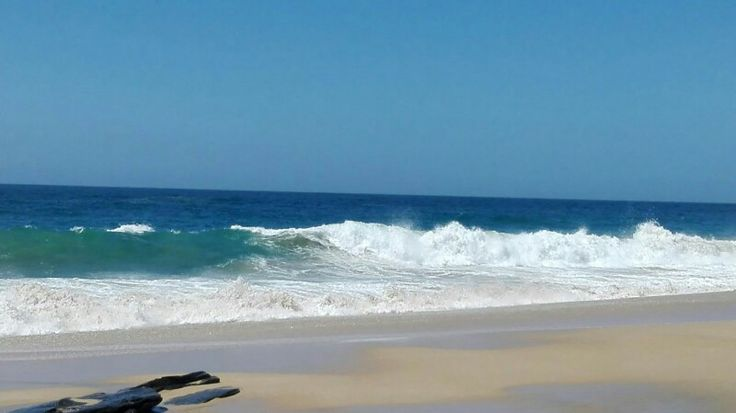 Oceano , baja California sur
