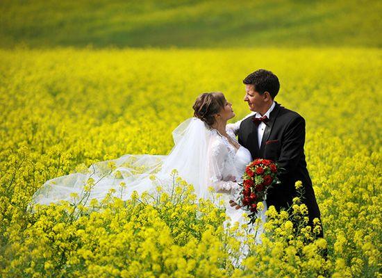 fotograf na ślub bydgoszcz, plenerowa sesja ślubna W otoczeniu natury