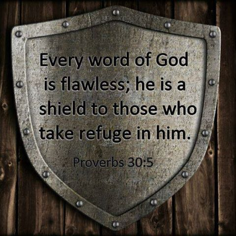 """""""No one is condemned who takes refuge in Him."""" Psalm 34:22"""
