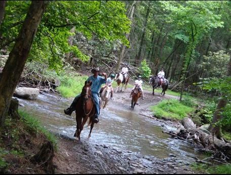 Cades Cove Riding Stables, Townsend, Tennessee