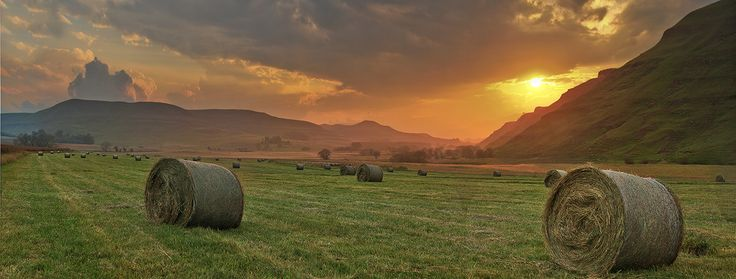 Underberg Himeville South Africa, Late one evening last autumn, new hay bales and the setting sun...