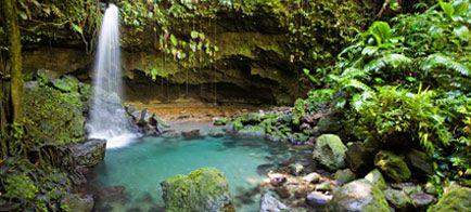 natuurpark-dominicaanse-republiek.ashx (434×196)