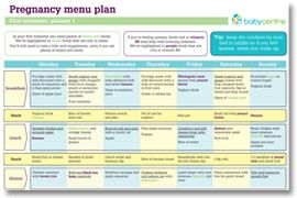 Meal plans for various stages of pregnancy