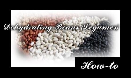 Pinto, Kidney, Black, Fava, Garbanzo, or White Bean Varieties Why dehydrate cooked beans? Dehydrating cooked beans allows you to use them in quick meals when you do not have time for the long soaki…