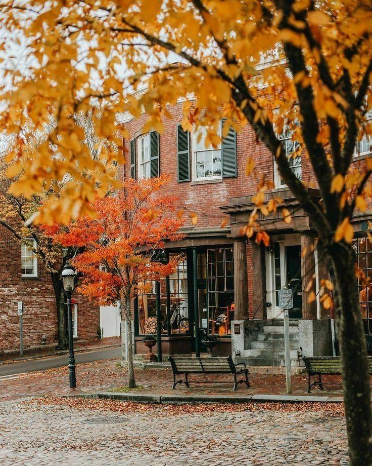 Autumn bliss ღ fall blessings image by Bellâ Sky