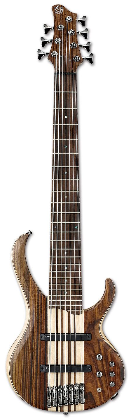 12 best images about 9 String Guitars and beyond on Pinterest ...