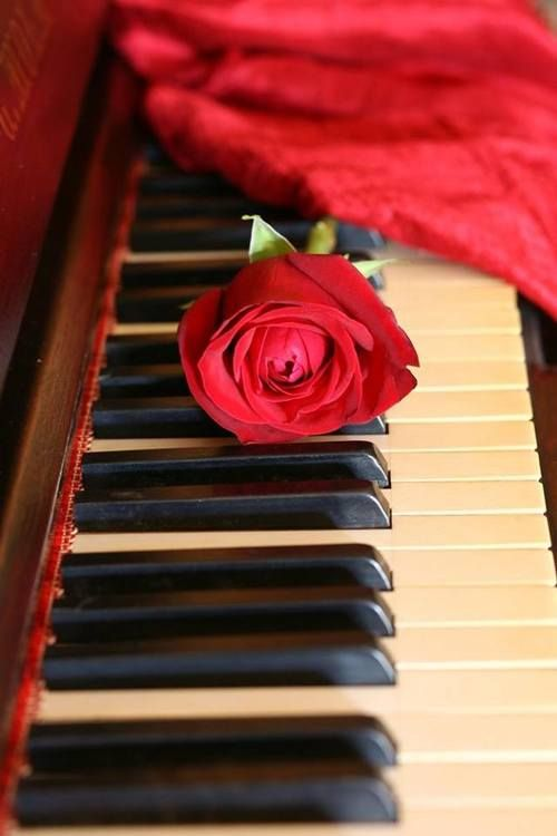 .♫ ♥ making beautiful music together ♫ ♥ X ღɱɧღ