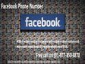 Call at Facebook Phone Number to fix resilient issues 1-877-350-8878Facebook hurdles have never been hidden from any of the Facebook user. Once these issues occur, they can drive you up the wall. To prevent you from this situation, our Facebook Phone Number 1-877-350-8878 is always available for you, be it midday or midnight. So, stay tuned with us. For more information: http://www.monktech.net/facebook-customer-support-phone-number.html