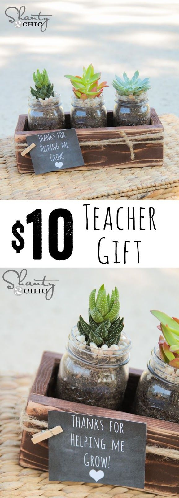 Teacher Gift - $10 succulent with FREE plans and printable via Shanty 2 Chic