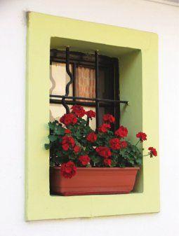 Az+ablakpárkány+növényeit+májusban+már+kitehetjük+a+szabadba.+Ültetéskor+vegyük+figyelembe+a+növények+hő-+és+fényigényét!+  +Déli+ablakokba+kimondottan+meleg-+és+napfénytűrő+virágokat+ültessünk.+Az+északi+oldalra+az+árnyékot+kedvelők+kerüljenek.+A+növények+számára+a+keleti+és+délkeleti+fekvés+a…