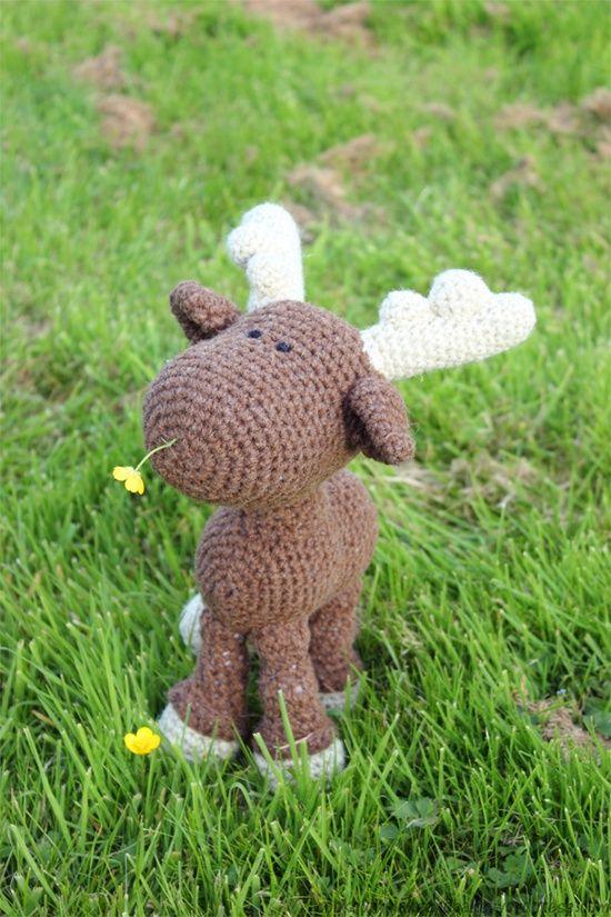 cutie deer <3