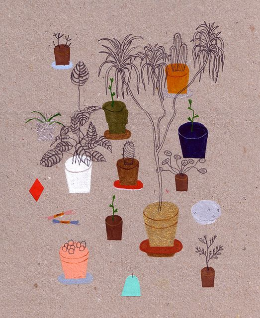 plants by william.edmonds, via Flickr