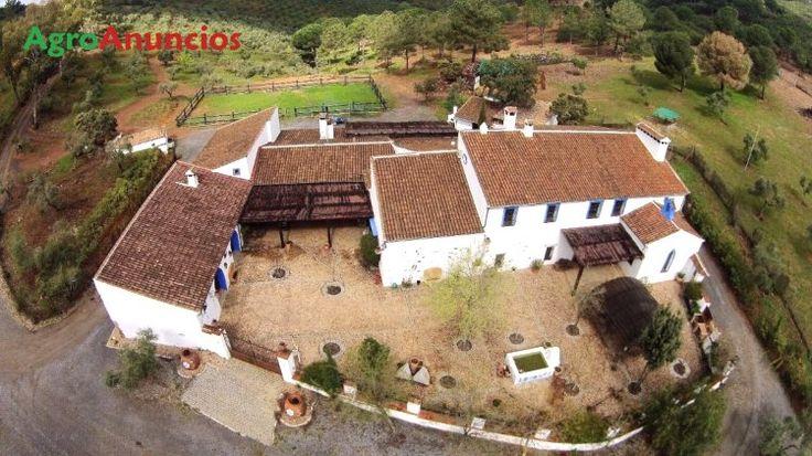 Venta de Finca de explotación cinegética y olivar ecológico en Córdoba