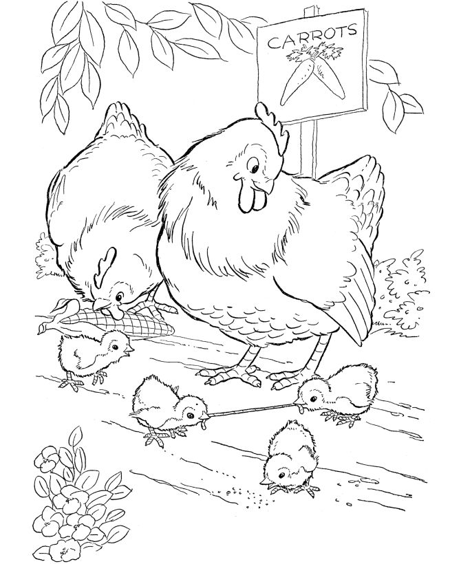 Little Chicken Is Sliding Chicken Coloring Pages