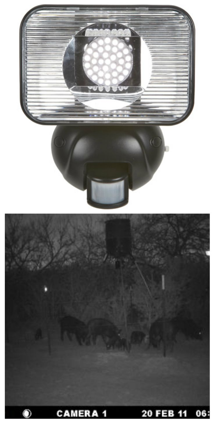 Motion Activated LED Solar Security Light. Dual purpose - at home or out hunting