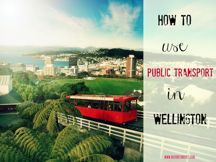 How to use public transport in Wellington