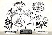 Wild Herbs Flowers silhouette vector - Illustrations - 2