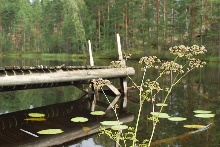 Nuuksio, National Park close to Helsinki