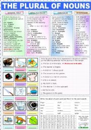 English worksheet: THE PLURAL OF NOUNS