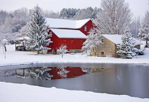 BarnsChristmas Cards, Winter Scene, Farms Pictures, Snow, The Farms, Winter Wonderland, Red Barns, Country Barns