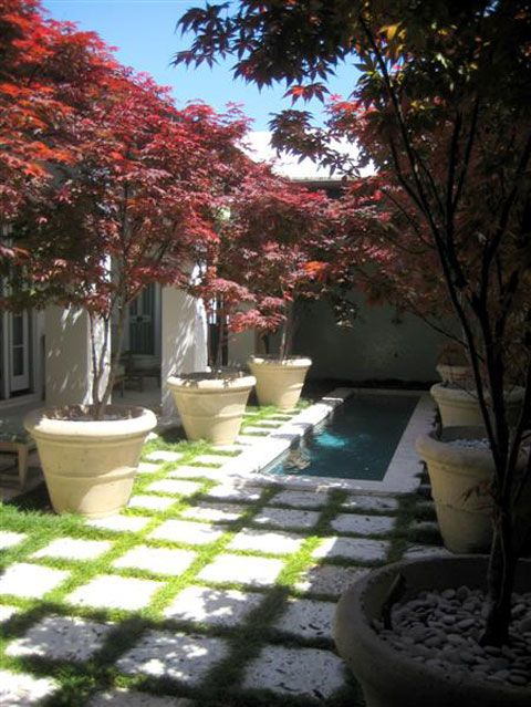 65 Best Images About Troy Rhone Garden Design On Pinterest