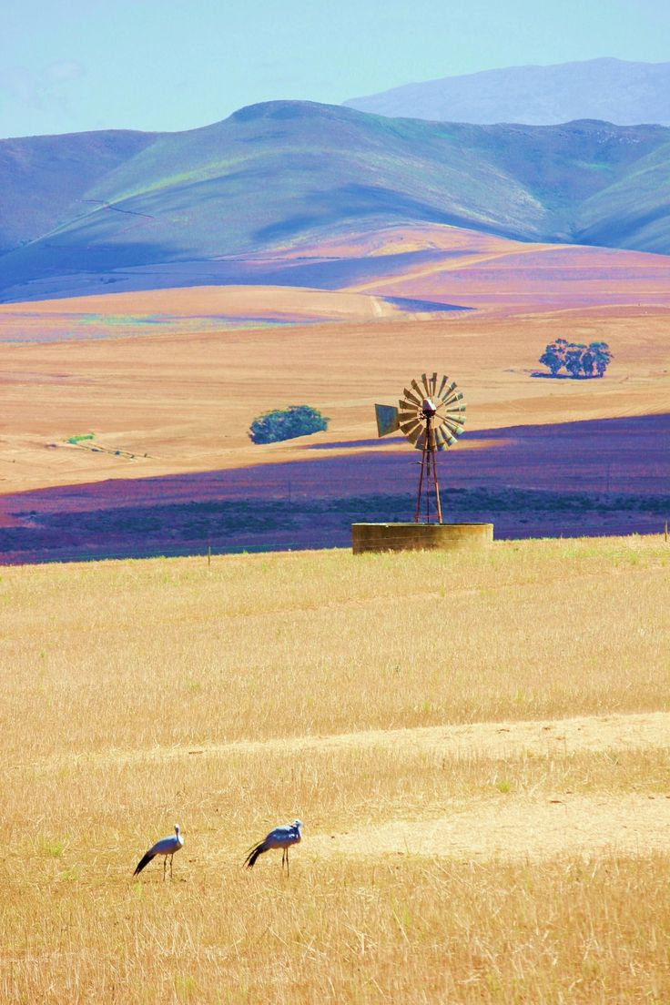 Bredasdorp, Western Cape, South Africa - BelAfrique - Your Personal Travel Planner - www.belafrique.co.za