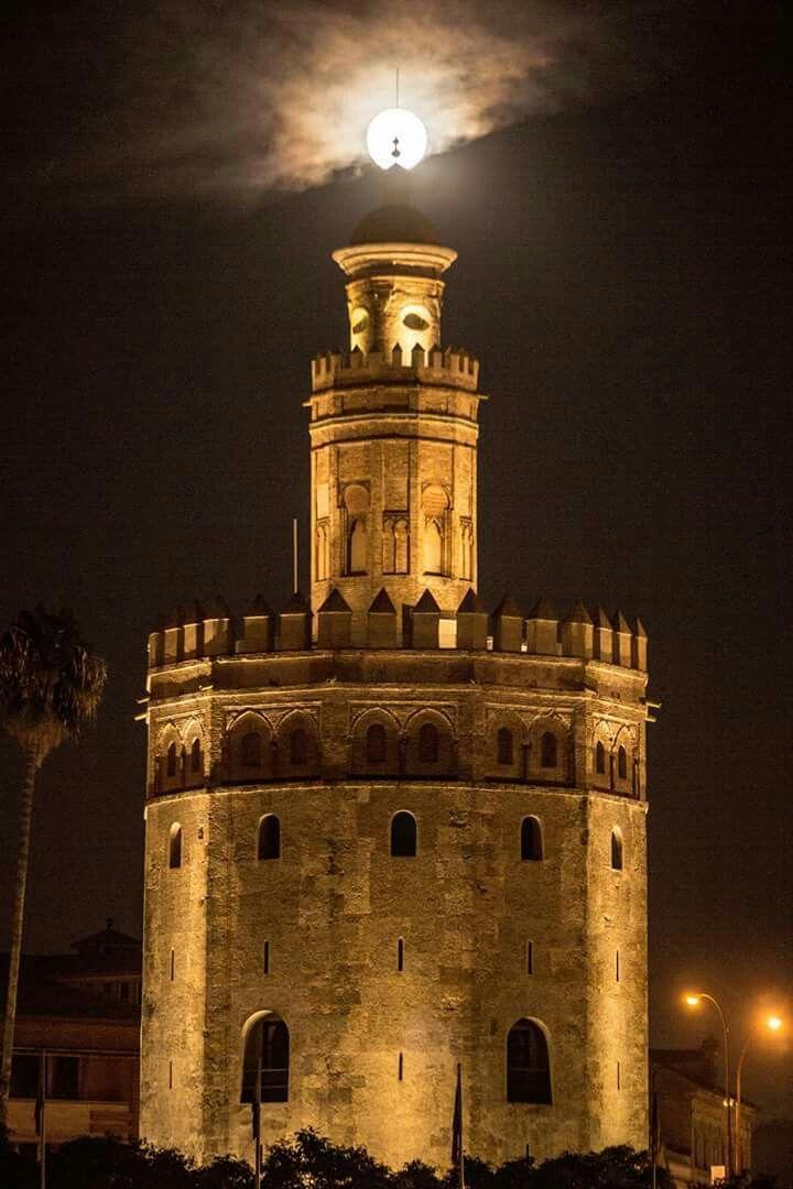 Torre del Oro - Sevilla.España