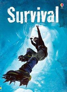 Usborne Beginners Plus: Survival