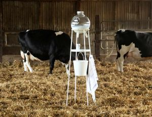 Milk Factory - 5.5 Designers