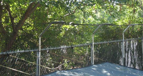 Peace in the Yard: 7 Ways To Dog Proof Your Fence   notes ...