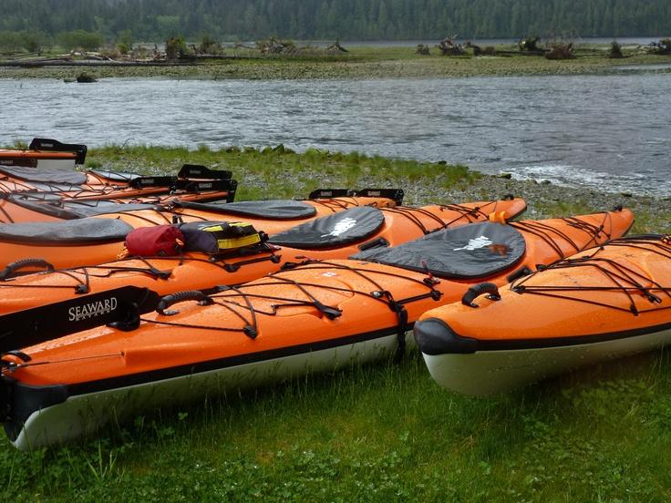 Our new fleet of Seaward Ocean Kayaks at Clayoquot Wilderness Resort. www.wildretreat.com: Kayaks Paddles Boards, Www Wildretreat Com Kayaks, Link, Seaward Kayaks, Ocean Kayaks, Kayaks Wildretreat, Clayoquot Wilderness, Wilderness Resorts, Seaward Ocean