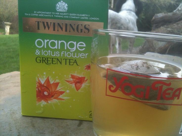 Orange and Lotus Flower Green Tea. Yum.