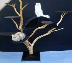 arbre a chat original - Recherche Google