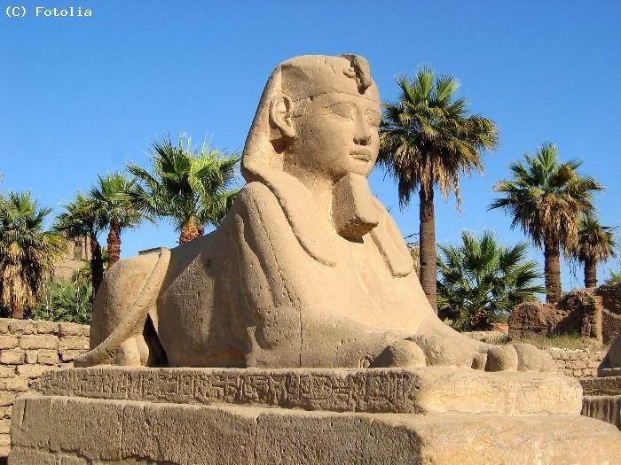 Le Sphinx - Egypte