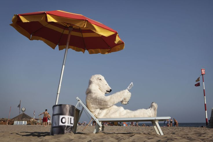 Che ci fa un orso polare in spiaggia? Lancia a tutti l'appello #savethearctic: per fermare i piani di trivellazione di Shell e salvare la sua casa. Per tenere Shell lontana dall'Artico serve anche il tuo aiuto. Firma su www.SaveTheArctic.org