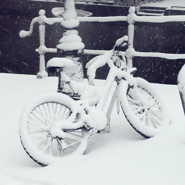 Spotted a lot of snow covered bikes on our sunday walk in Leiden. Today after work my bike looked pretty much like this one!  .  .  #walkinthesnow #dutchwinter #winterstories #embracingtheseasons #bikesinthesnow