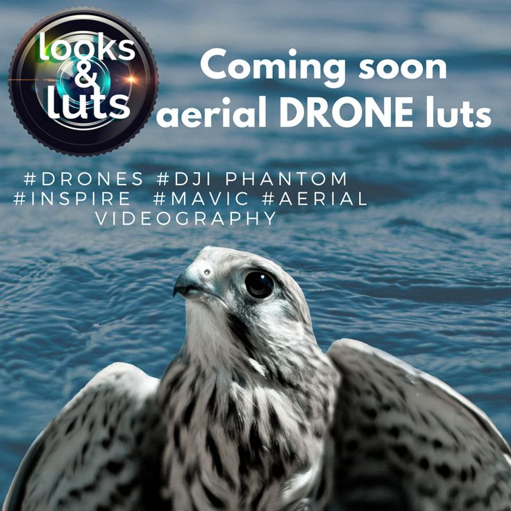 THE NEW DRONE LUTS COLLECTION A complete pack of 30 beautiful Luts for your aerial footage  #drone #drones #dronefly #dronestagram #dronephotography #dronevideo #uav #aerial #aerialphotography #aerialvideo #aerialphoto #DJI #djiphantom #djiinspire #log #DLog #DCinelike #3dlut #3dluts #lut #colorgrading #djiglobal #postproduction #colorgrader #colorgraders
